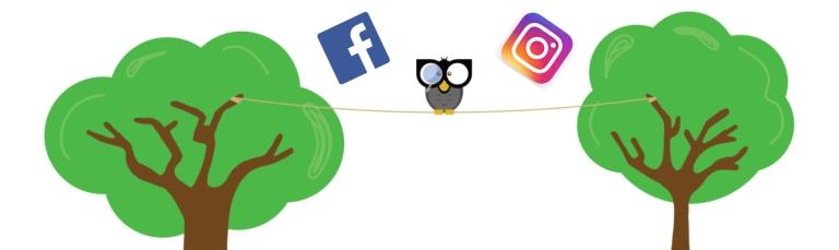 FB vs. Instagram
